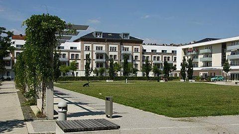 Beckett Flügel, Kassel