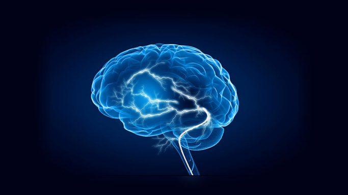 Neuroforschung