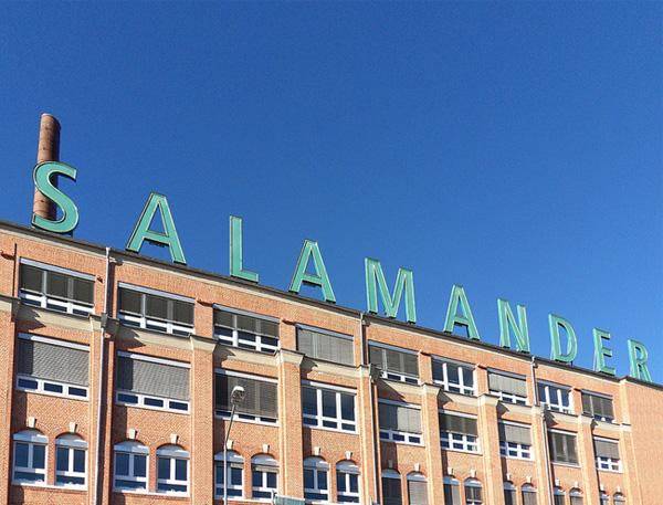 Salamander-Areal